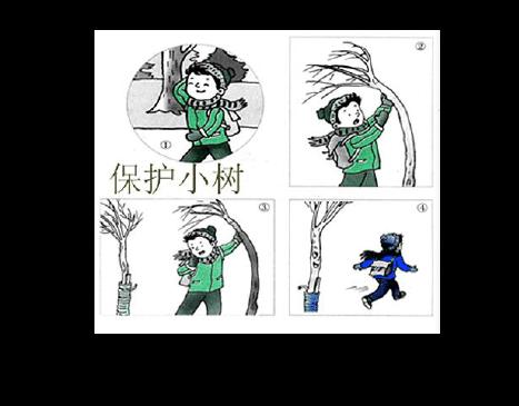 二年级上册看图写话单项练习