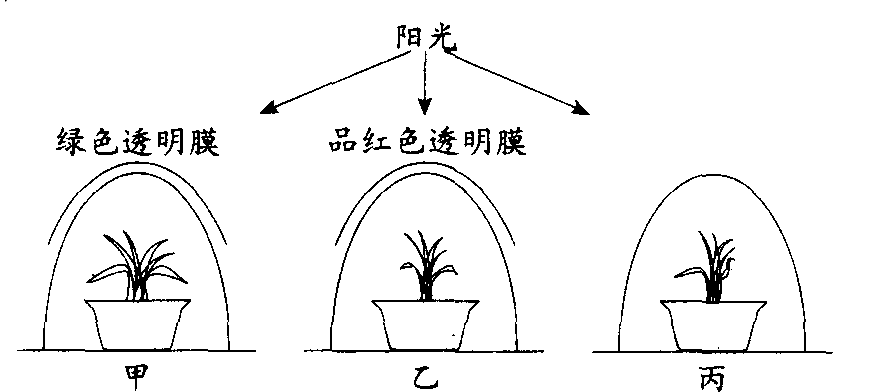 1下图是植物细胞亚显微结构模式图图片
