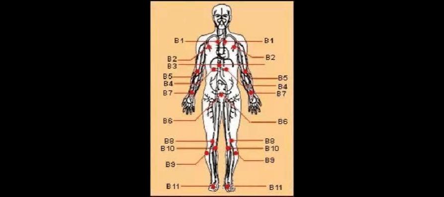 最全人体穴道图 自己身体自己爱—珍爱自己,预防疾病. 只要