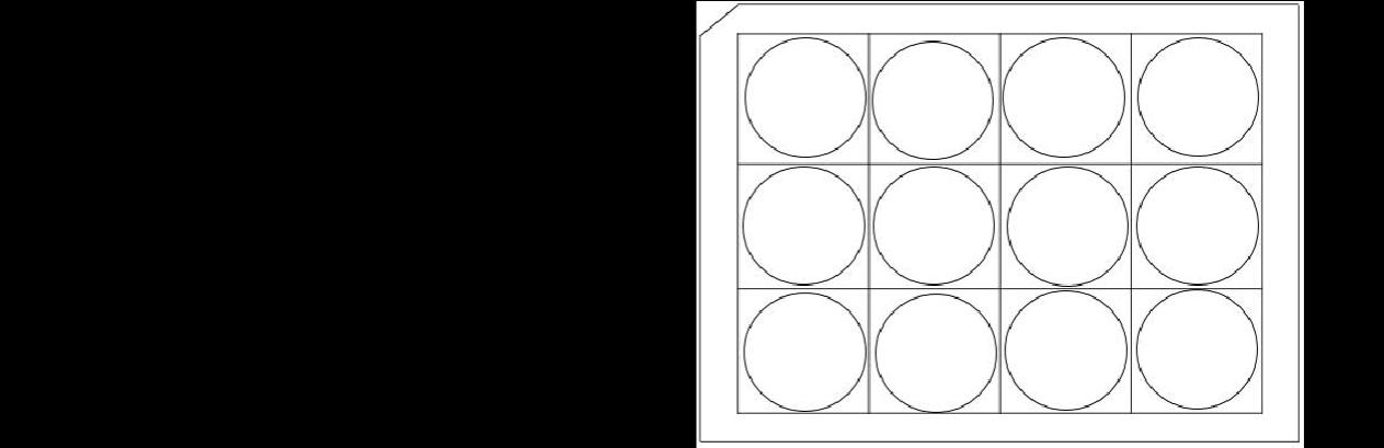 12孔培养板示意图(A4纸打印版)