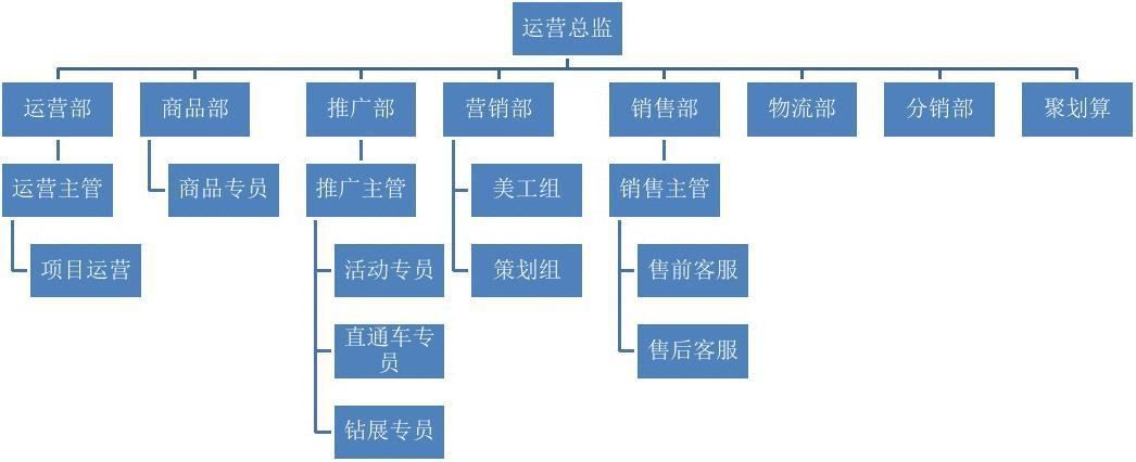 电商公司岗位结构图_运营部门组织架构_运营部组织架构图 - 随意贴