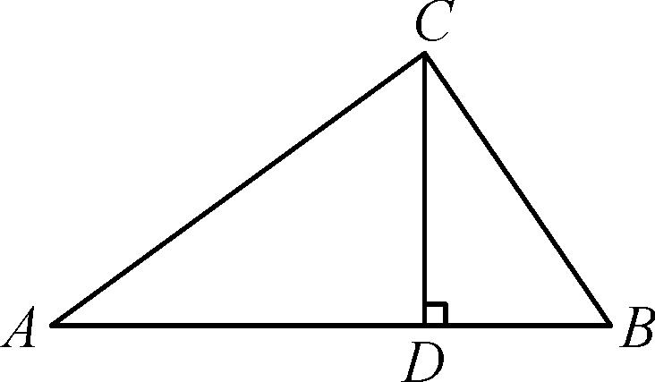 2018年春中考數學總復習 第四單元 圖形的初步認識與圖片