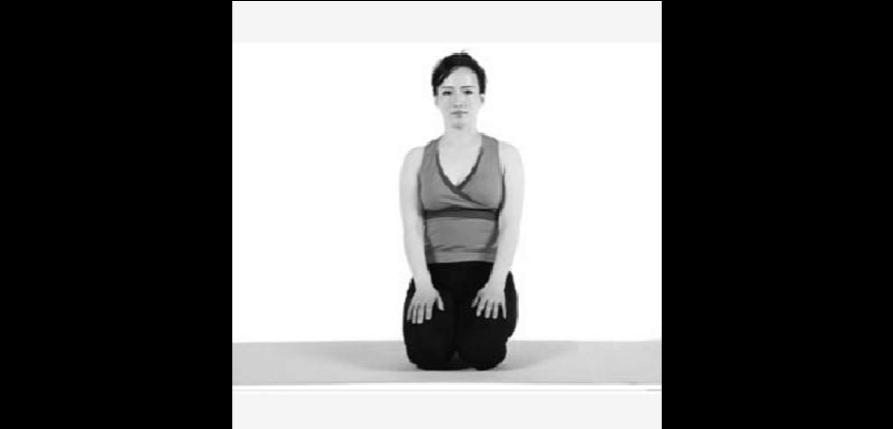 瑜伽跪立式基本体位-狮子式图片