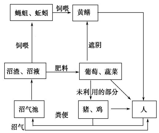 2013学年第一学期期中杭州地区七校联考高三年级生物学科试题及参考答案