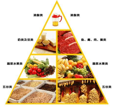 大学生饮食健康论文_大学生饮食健康调查表