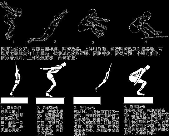 《立定跳遠》微課進階練習動作指導答案圖片