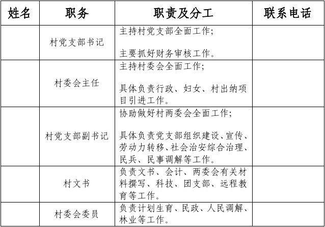 村两委会班子成员职责及分工1