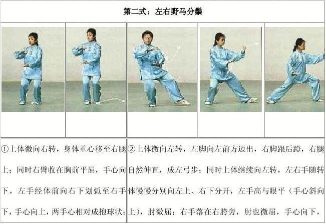 杨氏太极拳24式图谱