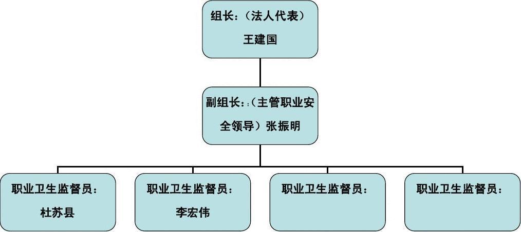 职业卫生管理组织机构图