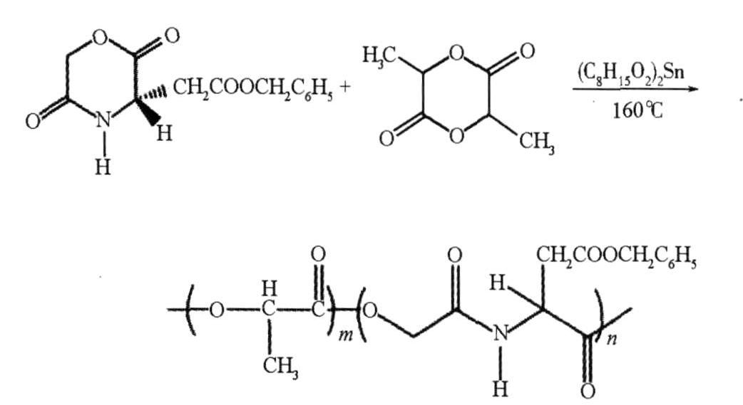 聚天冬氨酸的改性及其应用研究进展 有用