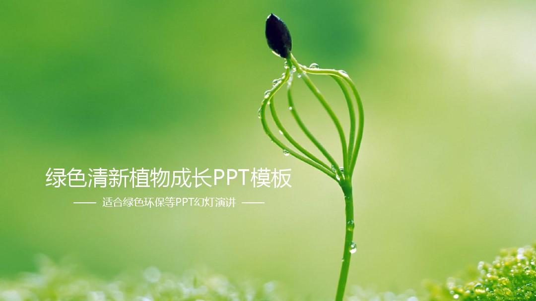 简约绿色清新植物成长ppt模板