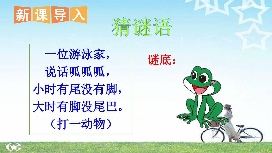 统编版教材二年级语文上册二语语文课件1 小蝌蚪找妈妈课件