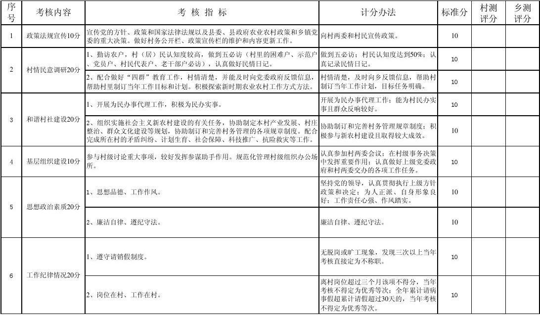 安定乡大学生村官量化考核评分表