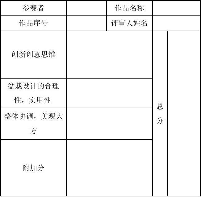 diy设计大赛决赛评分表图片
