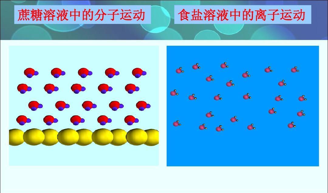 蔗糖溶液中的分子运动