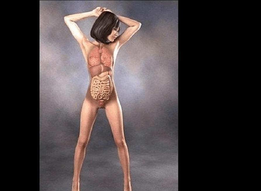 人裸体舞_舞蹈 893_652