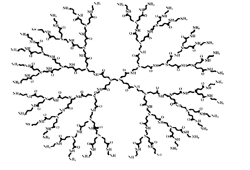 树枝状高分子聚酰胺_胺的合成研究重庆有哪些号的景观设计公司图片