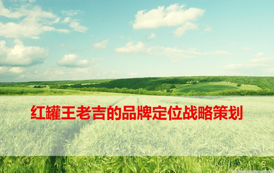 红罐王老吉的品牌定位战略策划
