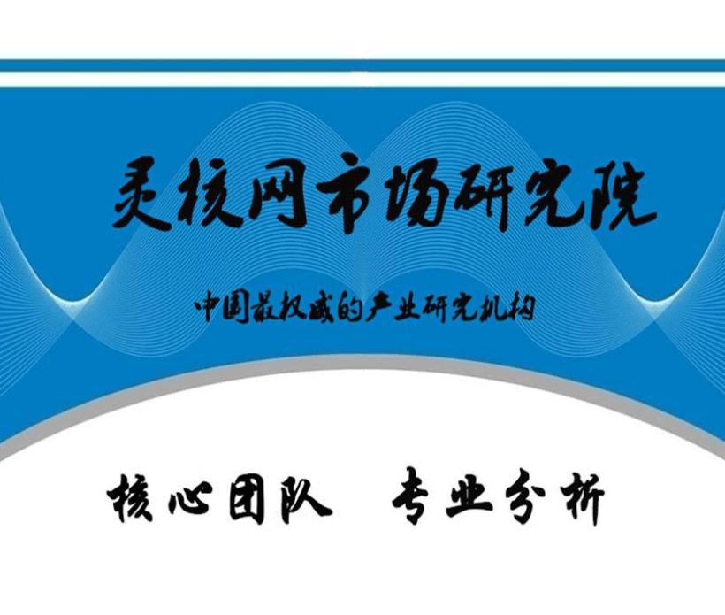 中国核级电动机行业现状及投资分析报告-灵核网