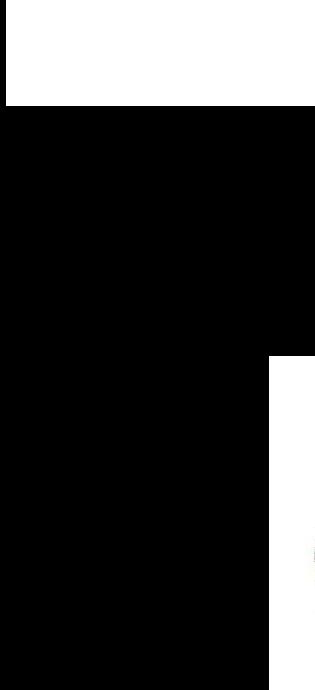 人体性器呈_人体血管解剖图