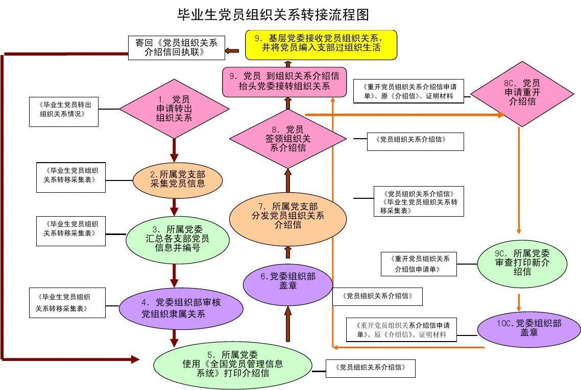 毕业生党员组织关系转接流程图