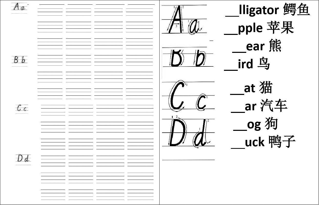 26個英文字母書寫標準及練習本-a4打印答案圖片