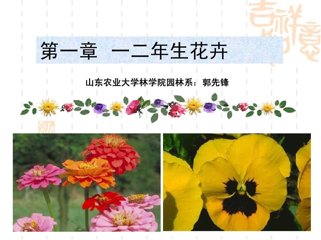 一二年生花卉1
