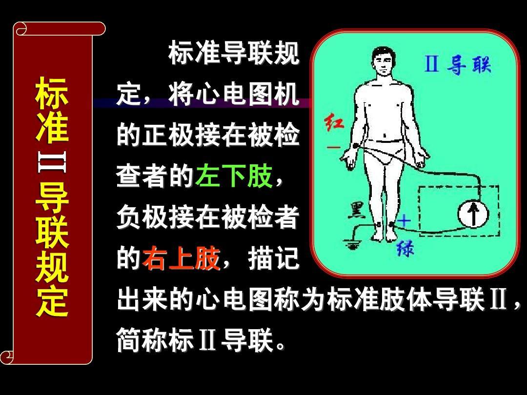 心电图导联体系-2ppt