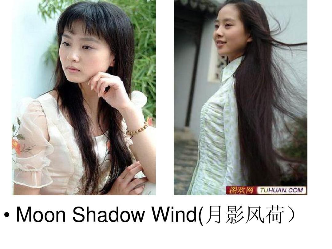moon shadow wind(月影风荷)