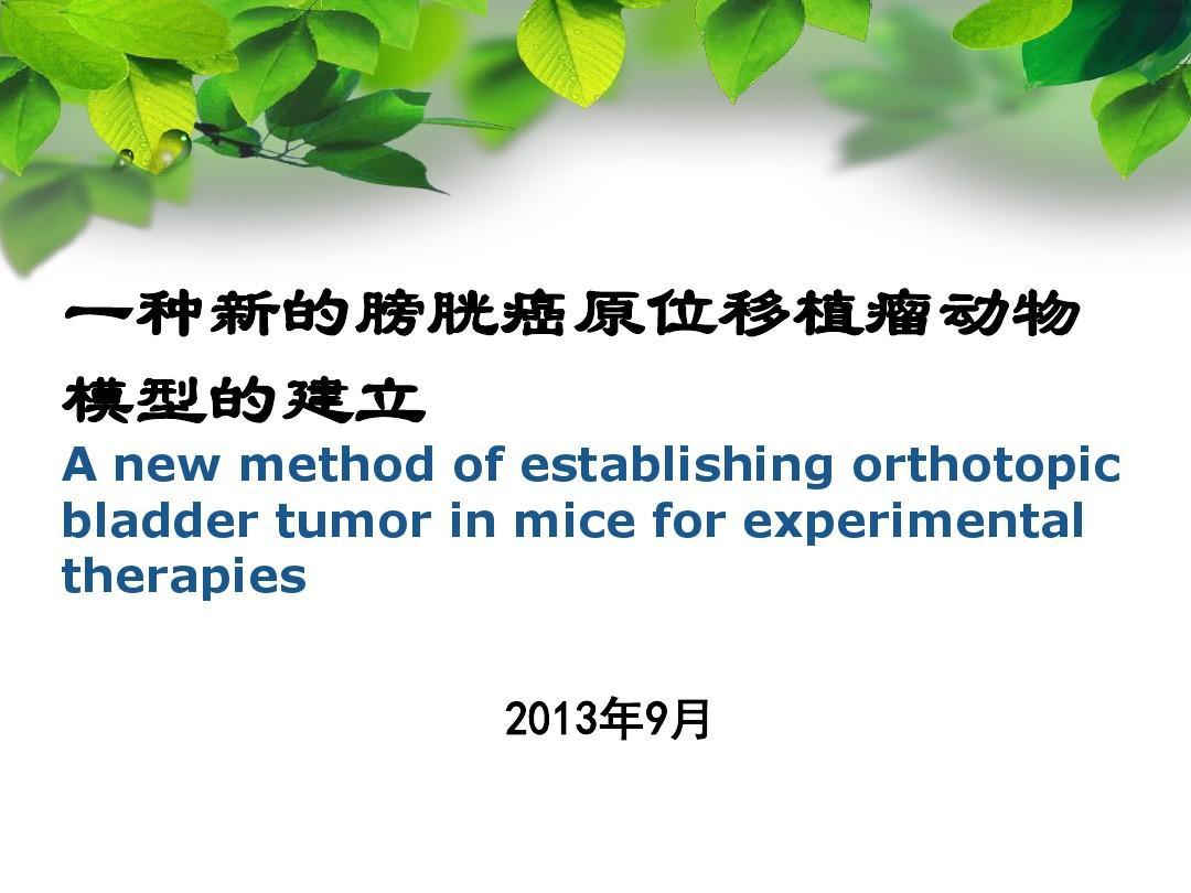 一种新的膀胱癌原位移植瘤动物模型的建立