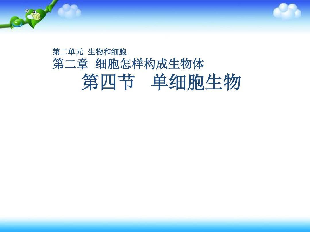 內蒙古七年級生物新人教版上冊課件:2.2.4單細胞生物2