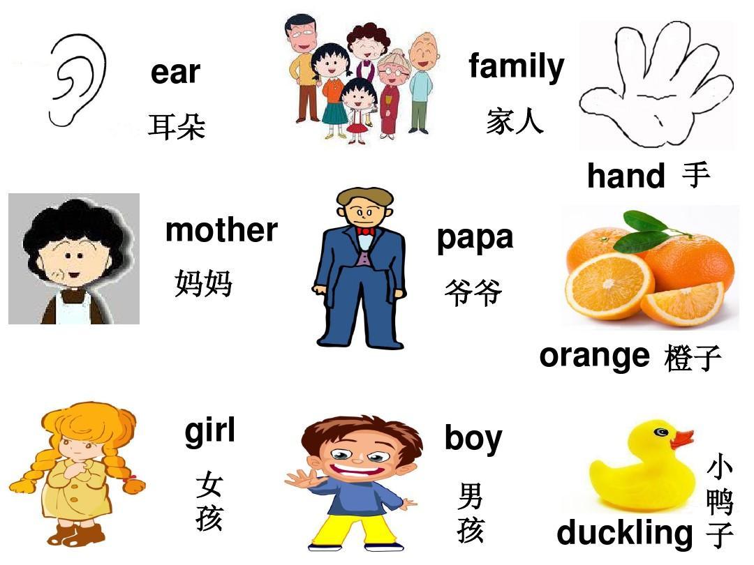 广东版儿童英语二年级下册 lesson one-lesson twelve单词复习答案ppt图片