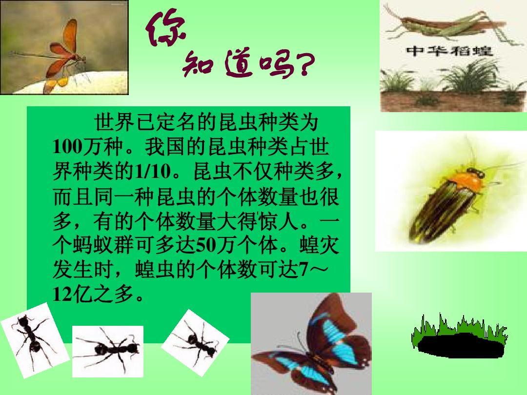 第二节昆虫的生殖和发育(人教版) 改ppt