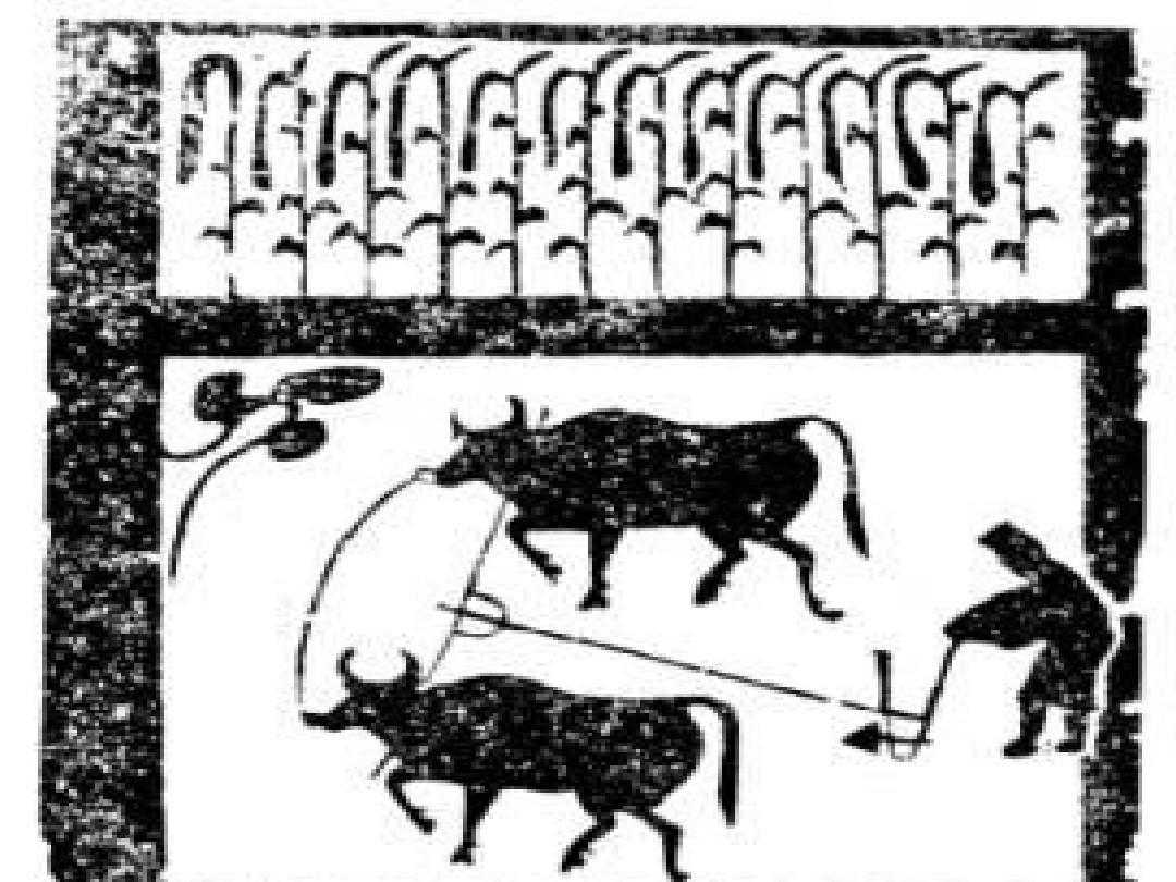 第8课_铁器牛耕引发的社会变革ppt图片