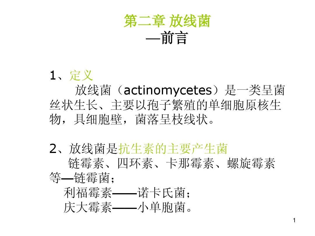 2-放线菌-1