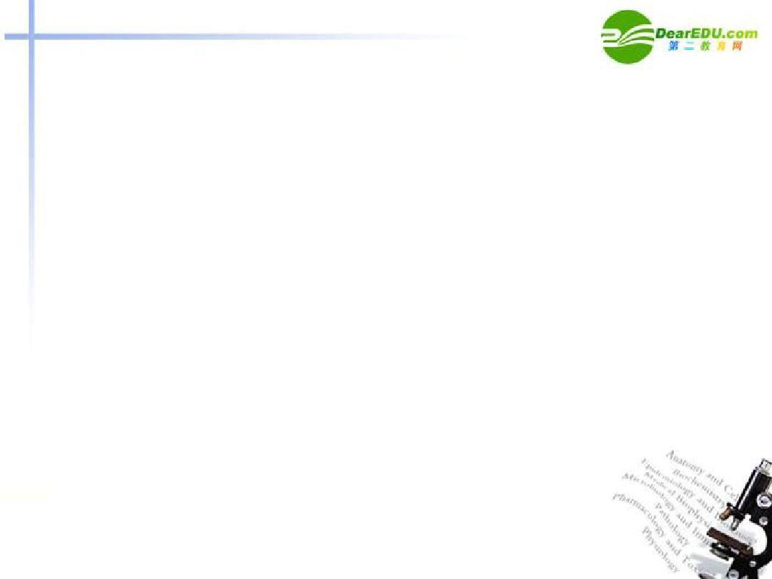 高中英语_5.3《Unit5_Music_全单元》课件_新人教版必修2(1)PPT