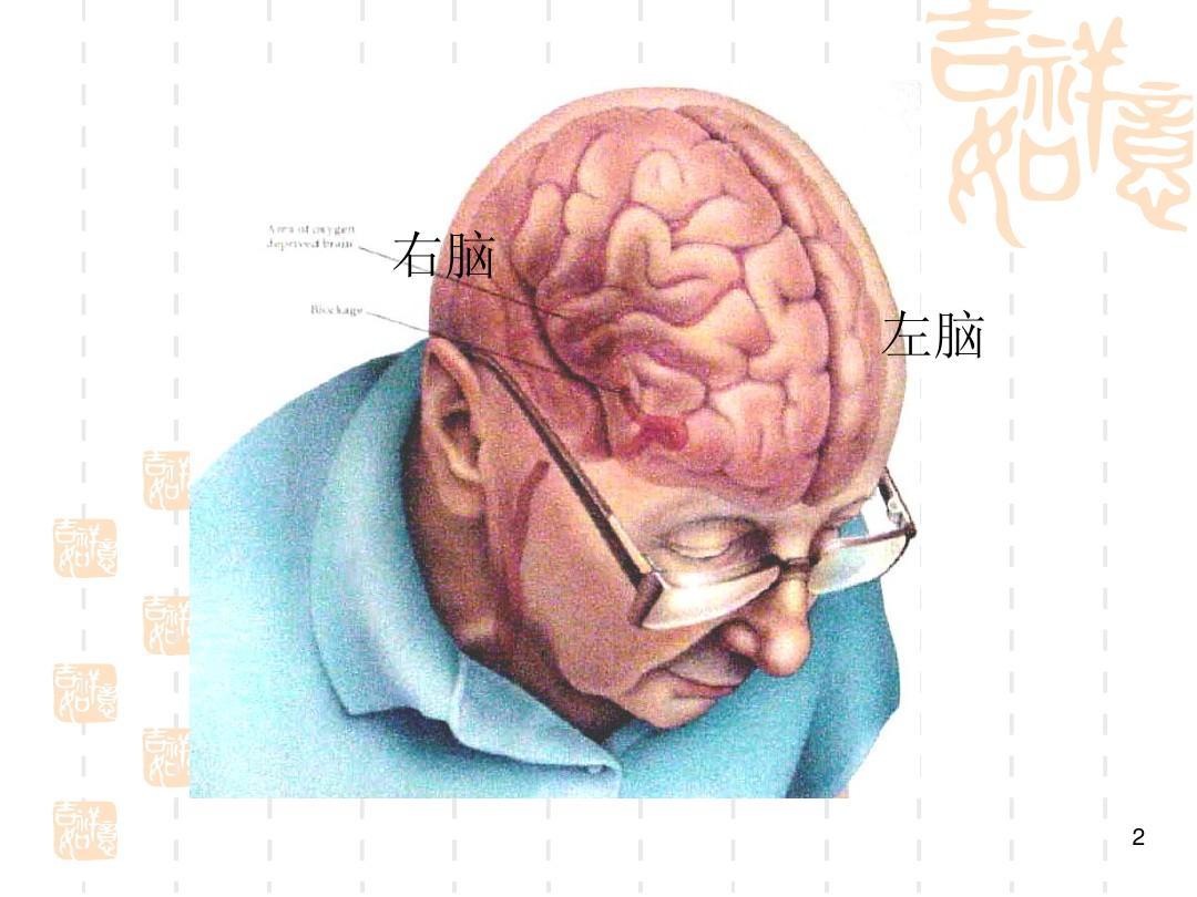 左脑��!$_右脑 左脑