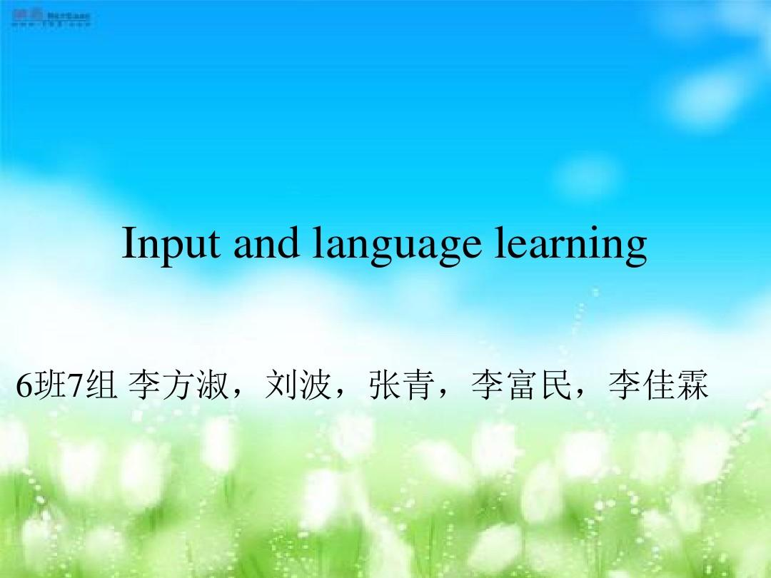 Input and language learning