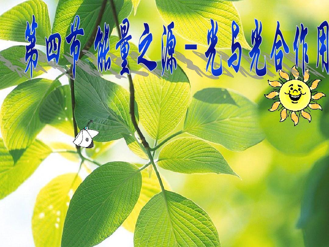 甘肃省会宁县高中生物必修一课件:5.4能量之源――光与光合作用(共40张PPT)