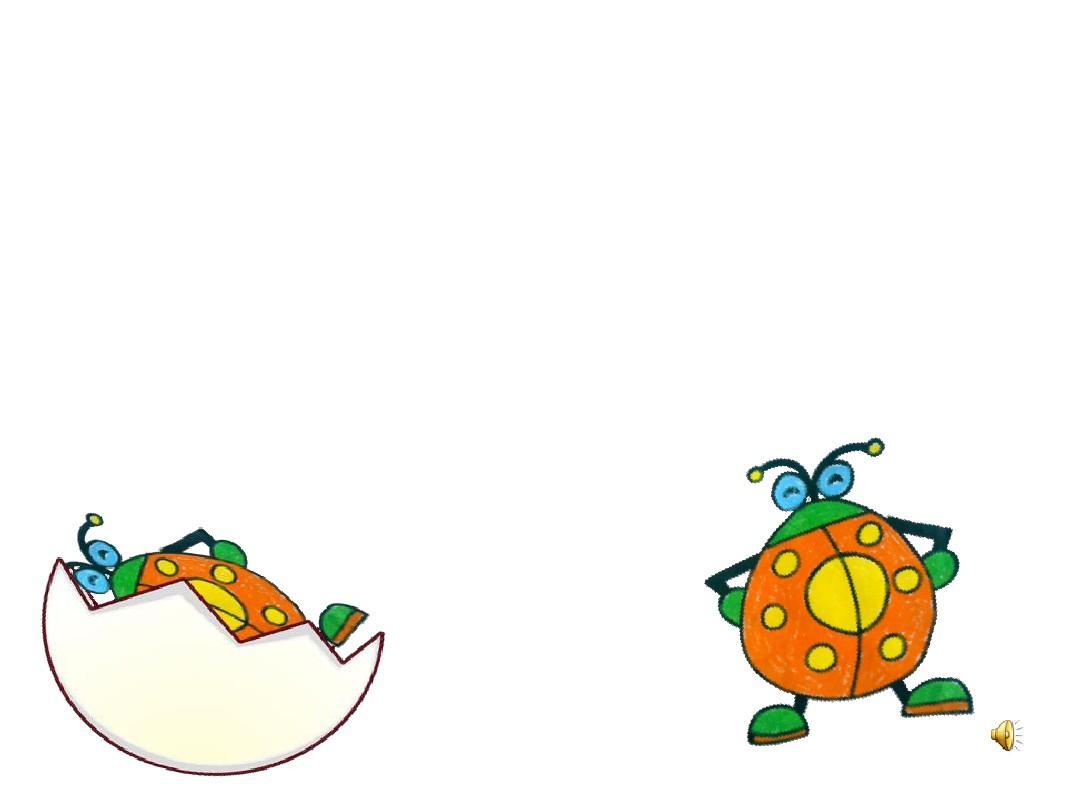 幼儿园小班语言课件ppt:小蛋壳图片