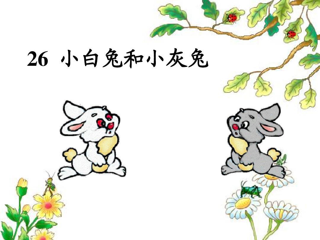26_小课件和小灰兔公开课数学(配完全v课件高二)ppt白兔教案备课组会议记录图片