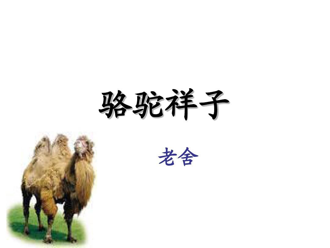 骆驼祥子课件ppt_word文档在线阅读与下载_免费文档