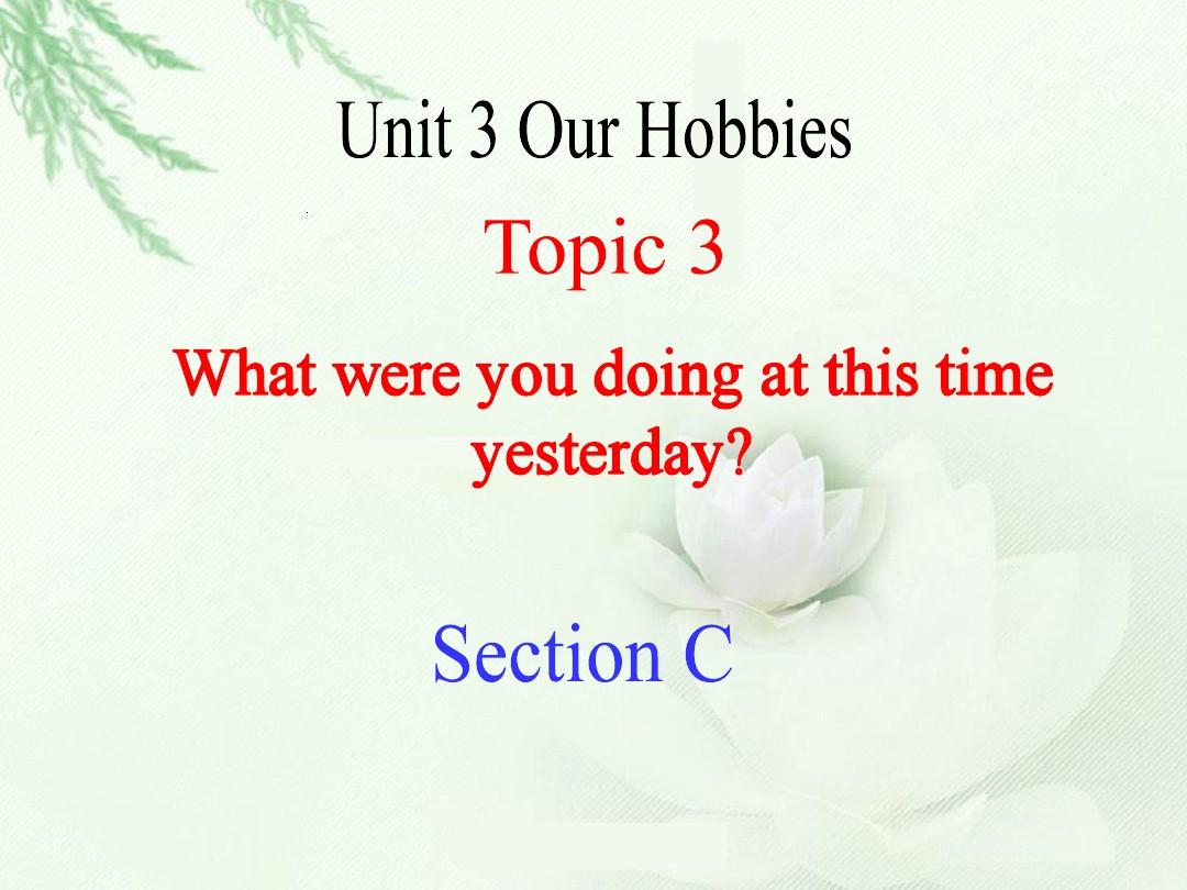 八课件英语精品Unit3Topic3SectionC年级教案大学生职业生涯v课件上册图片