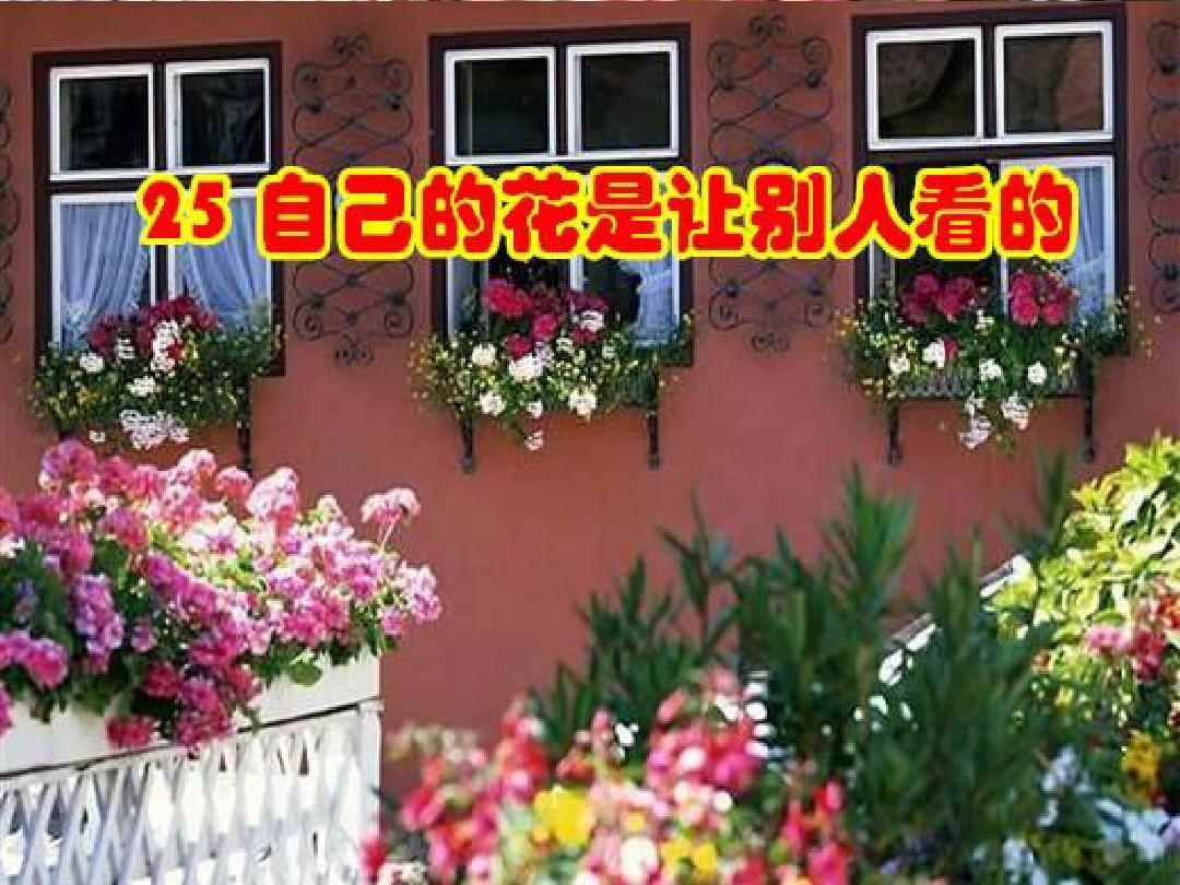 人教版五年级语文下册25.自己的花是让别人看的ppt(精品课件)