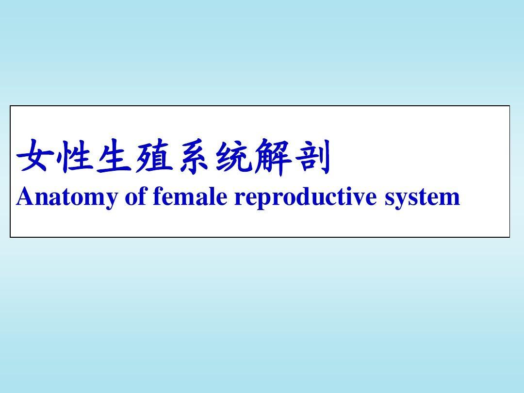 1-1  女性生殖系统解剖