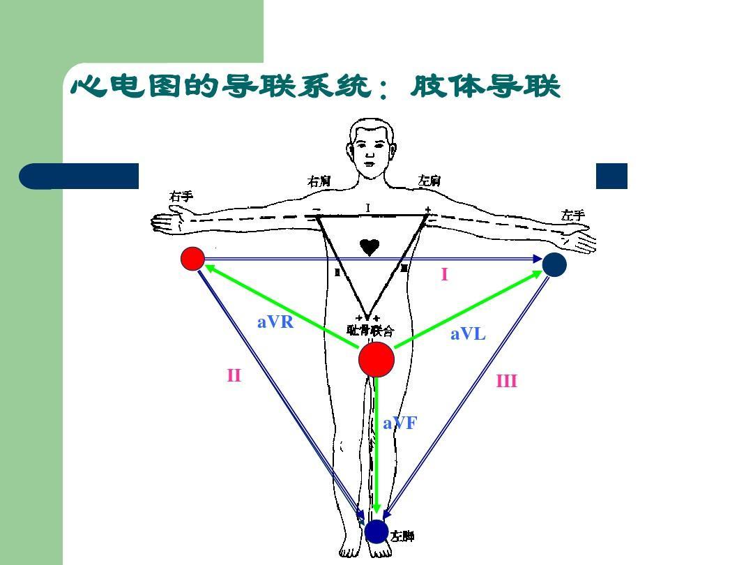 心电图的导联系统:肢体导联
