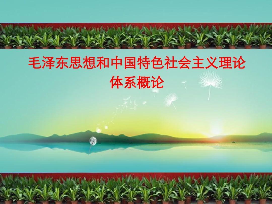 毛泽东思想和中国特色社会主义理论体系概论(2013年修订版)第一章马克思主义中国化两大理论成果