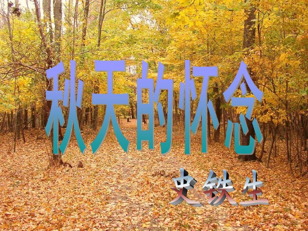 《秋天的思念》课件