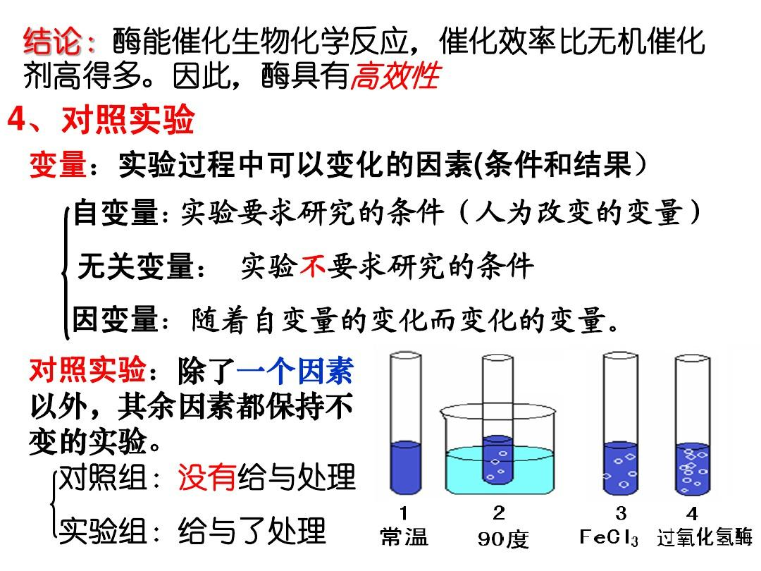 5.1酶的面点和本质ppt作用中式教学课件ppt图片