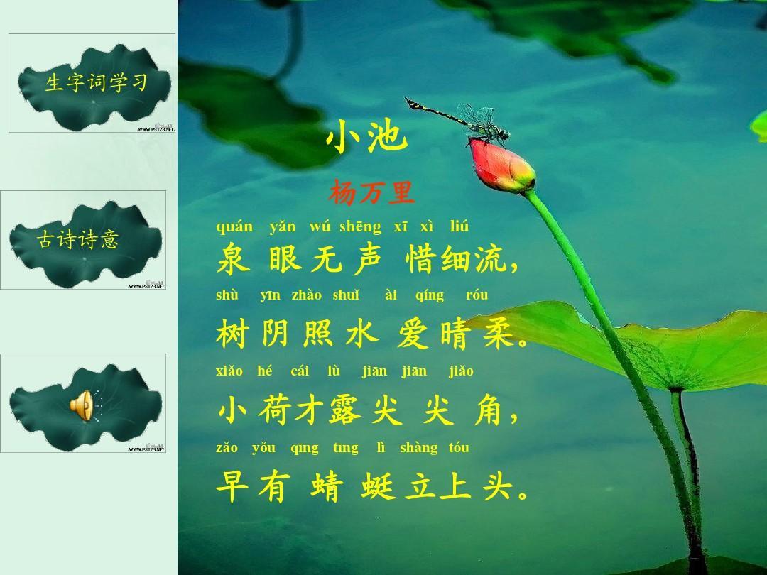 《小池》课件ppt  生字词学习 小池 杨万里 古诗诗意 quá n yǎn图片